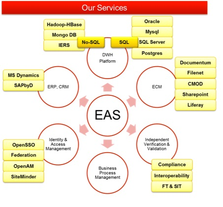 Enterprise  Application Services